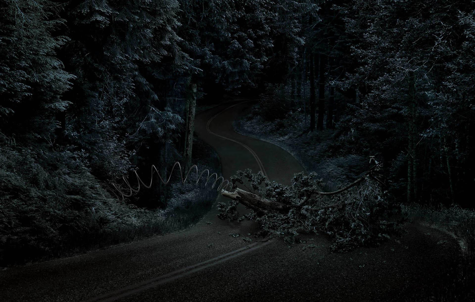 034 Mercedes-tree