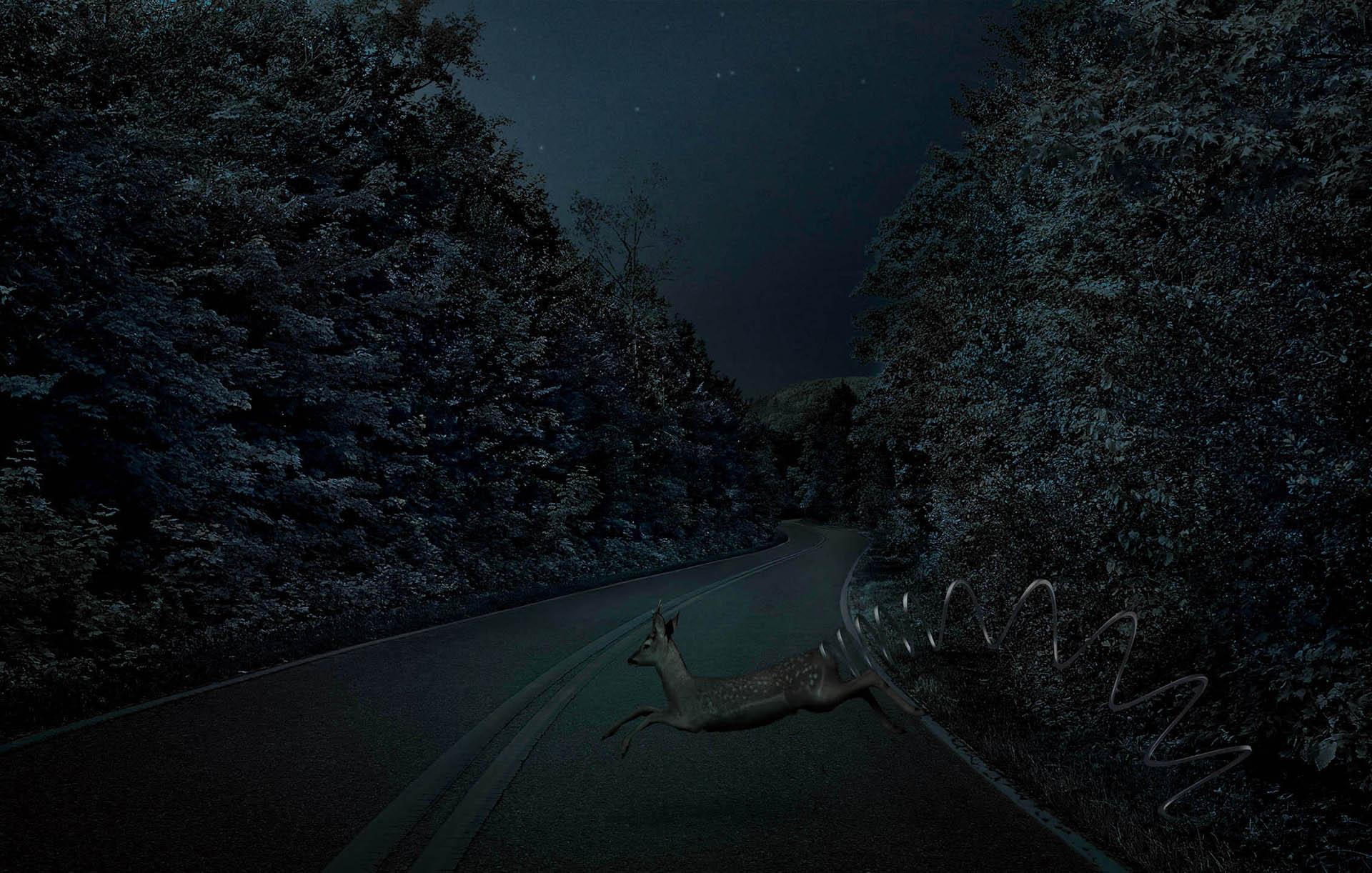 032 Mercedes-deer
