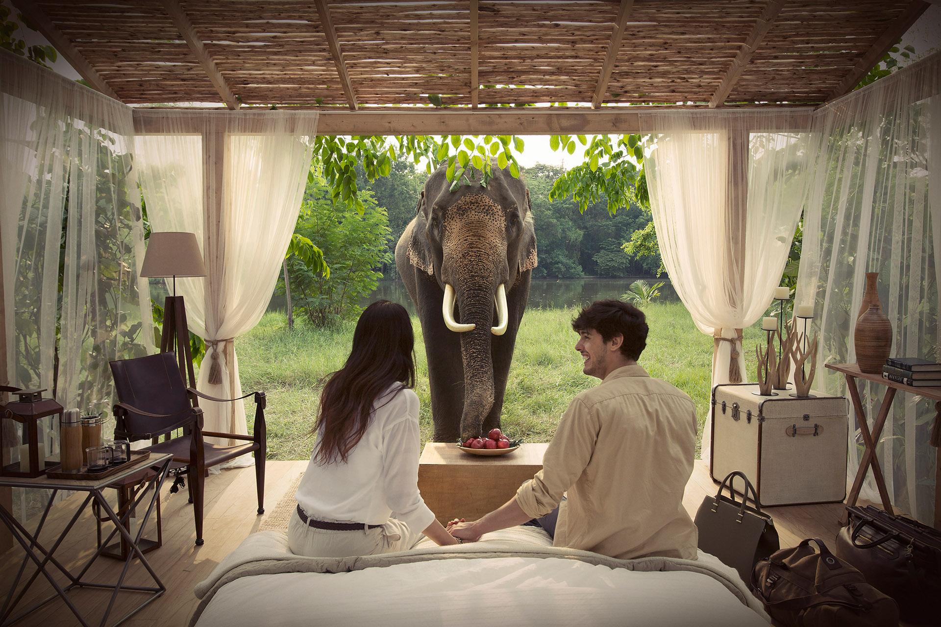 087 VISA_Thailand Elephant 280 210515